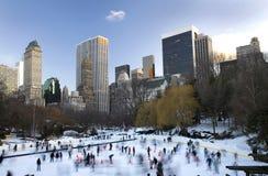parkowa centrali zima fotografia royalty free