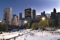 parkowa centrali zima Zdjęcia Royalty Free