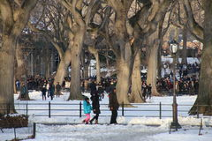 parkowa centrali zima Zdjęcie Royalty Free
