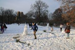 parkowa centrali zima Zdjęcie Stock