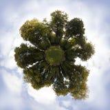 parkowa planeta obraz stock