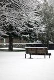 parkowa sceny opadu śniegu zima Zdjęcia Royalty Free