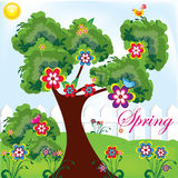 parkowa wiosna Zdjęcie Royalty Free