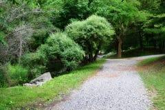 parkowe ścieżek Fotografia Royalty Free