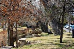 Parkowe ławki i drzewa Obrazy Royalty Free