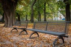 Parkowe ławki w spadku zdjęcie stock