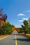 parkowe drogi Obraz Royalty Free