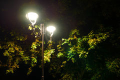 Parkowe noc lampionów lampy: widok alei przejście, droga przemian w parku z drzewami i ciemny niebo jako tło przy lata eveni, obrazy royalty free