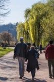 Parkowi ludzie Chodzi Wpólnie Max Eyth Widzią spadek Stuttgart Niemcy Zdjęcie Stock