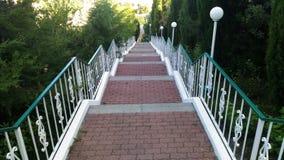 Parkowi schodków drzew kwiatów ludzie Obrazy Stock
