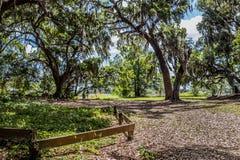 Parkowy ślad przy załogi pustkowia Jeziornym parkiem, Floryda obraz stock