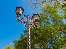 Parkowy alei światła metalu słupa skucie zdjęcie royalty free