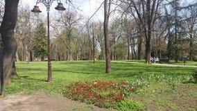 Parkowy Belgrade najlepszy widok Zdjęcia Royalty Free