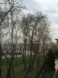 Parkowy Bursa obrazy royalty free