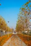 Parkowy footpath Fotografia Royalty Free