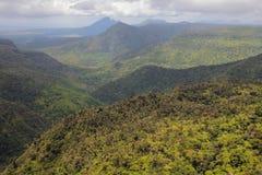 Parkowy ` jar Czarny Rzeczny ` Mauritius Obrazy Stock