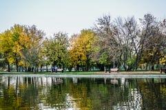Parkowy jezioro Fotografia Royalty Free