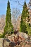 Parkowy krajobraz w jesieni Obrazy Royalty Free