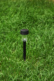 Parkowy lampion na zielonej trawie Obrazy Stock