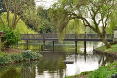 parkowy London regent s Zdjęcia Royalty Free