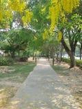 Parkowy ogród relaksuje miasto Zdjęcie Royalty Free