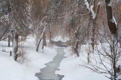 parkowy opad śniegu Obraz Royalty Free