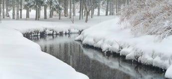 parkowy opad śniegu Fotografia Royalty Free