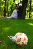parkowy para ślub Obraz Royalty Free