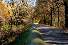 Parkowy przejście zdjęcie royalty free