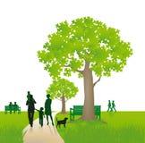 parkowy rodziny odprowadzenie Obrazy Royalty Free