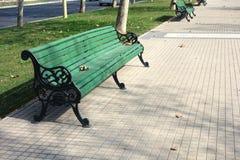 parkowy spacer Zdjęcia Stock