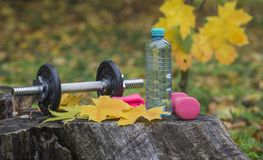 Parkowy treningu akcesorium Woda, dumbbells, nadgarstku bras zdjęcie stock