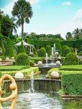 parkowy tropikalny projekta wysoki ilustraci krajobrazu planu fabuły postanowienie Obraz Royalty Free