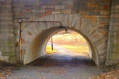 Parkowy tunel Obraz Stock