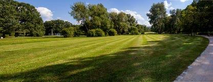 Parkpanorama geen zonnige de zomerdag Stock Fotografie