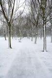 Parkpfad und -bank im Winterschnee Stockfotografie