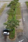 Parkplätze Stockfotografie