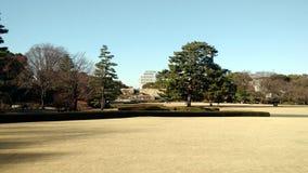 parks Arkivbilder