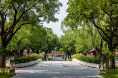 Parks of the Forbidden City or Gugong, Beijing, China Stock Photo