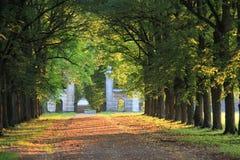 Parks gränd Royaltyfri Bild