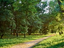 Parks. Park full of greenery in the suburbs of Milan, Cernusco sul Naviglio royalty free stock photos