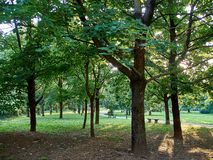 Parks. Park full of greenery in the suburbs of Milan, Cernusco sul Naviglio stock images
