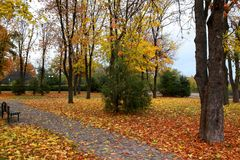 Parks of rest in autumn Royalty Free Stock Photography