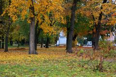 Parks of rest in autumn Stock Image