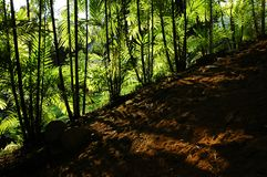 Parks und Gärten Lizenzfreies Stockfoto