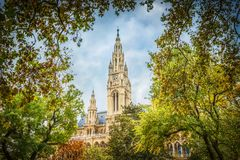 Parks of Vienna, Austria, view with City hall. And tree Stock Images