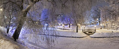 Parks in the winter night Royalty Free Stock Image