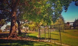 A Parkside. Park your bicycle and sit beside the tree under the warm shade Royalty Free Stock Image