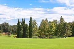 parksommar Royaltyfria Bilder
