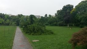 Parksteeg in Boekarest, Roemenië Royalty-vrije Stock Fotografie